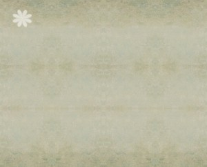 scrap_page_vintage_background12.jpg